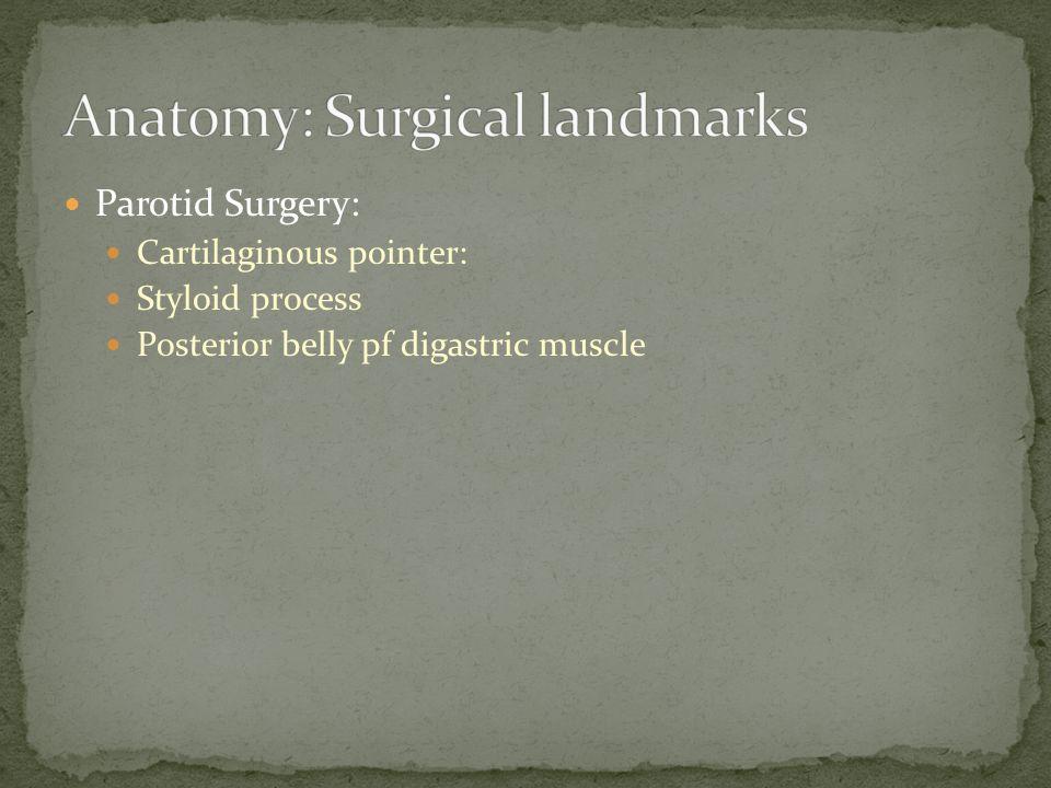 Anatomy: Surgical landmarks