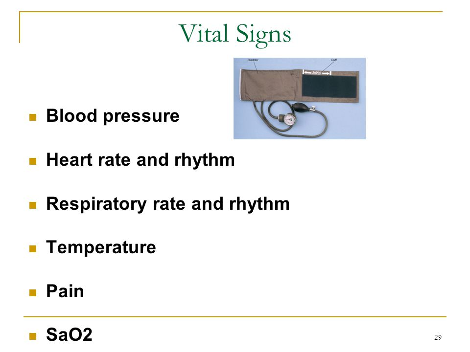 Vital Signs Blood pressure Heart rate and rhythm