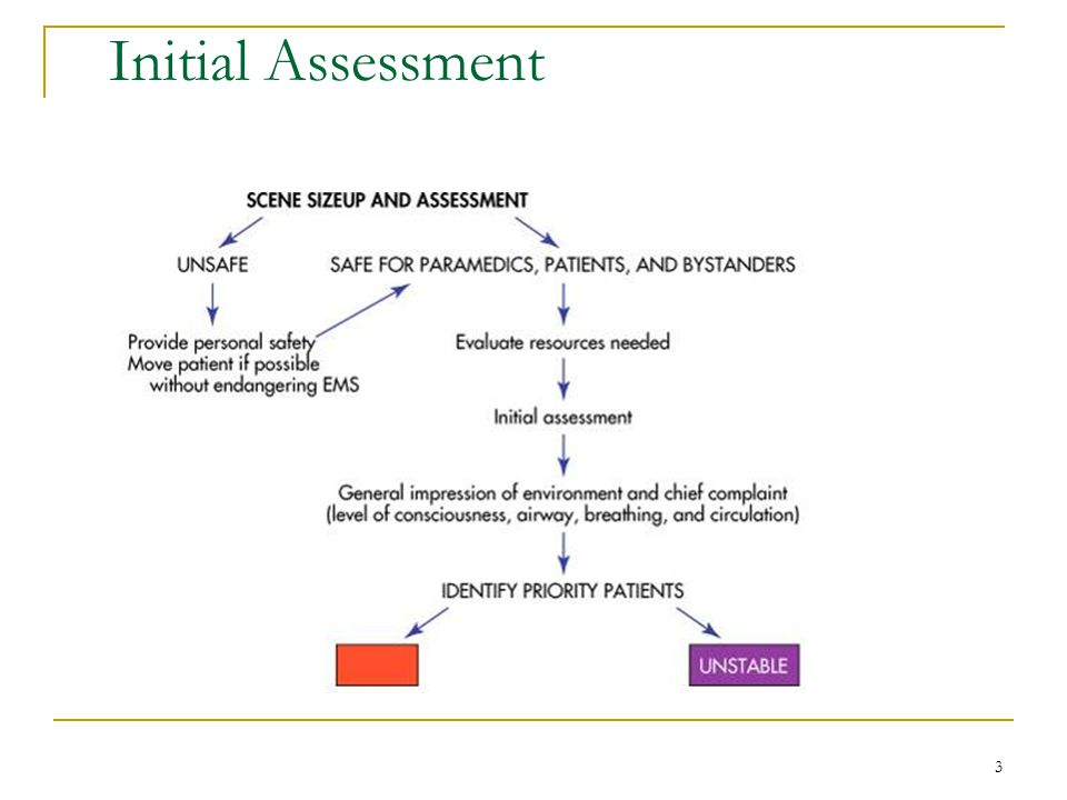 Initial Assessment Figure 14-1