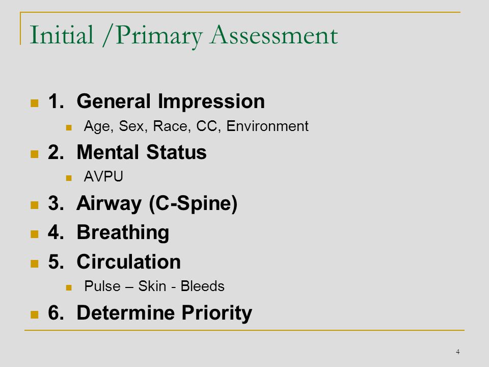 Initial /Primary Assessment