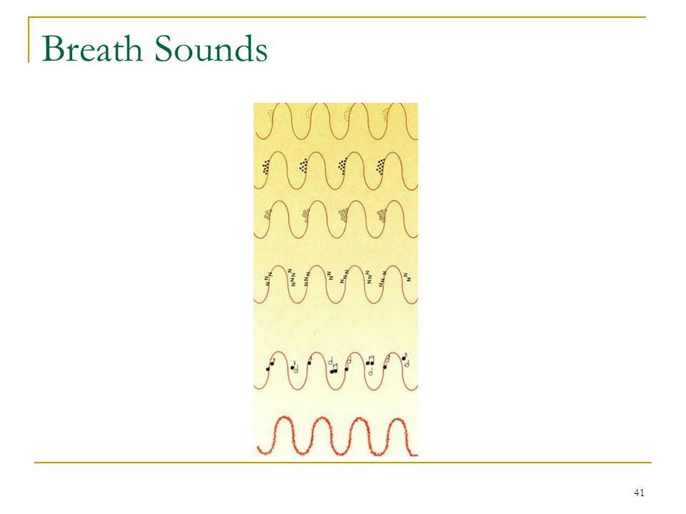 Breath Sounds Fig. 11-26