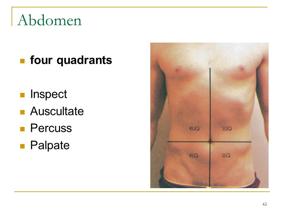 Abdomen four quadrants Inspect Auscultate Percuss Palpate