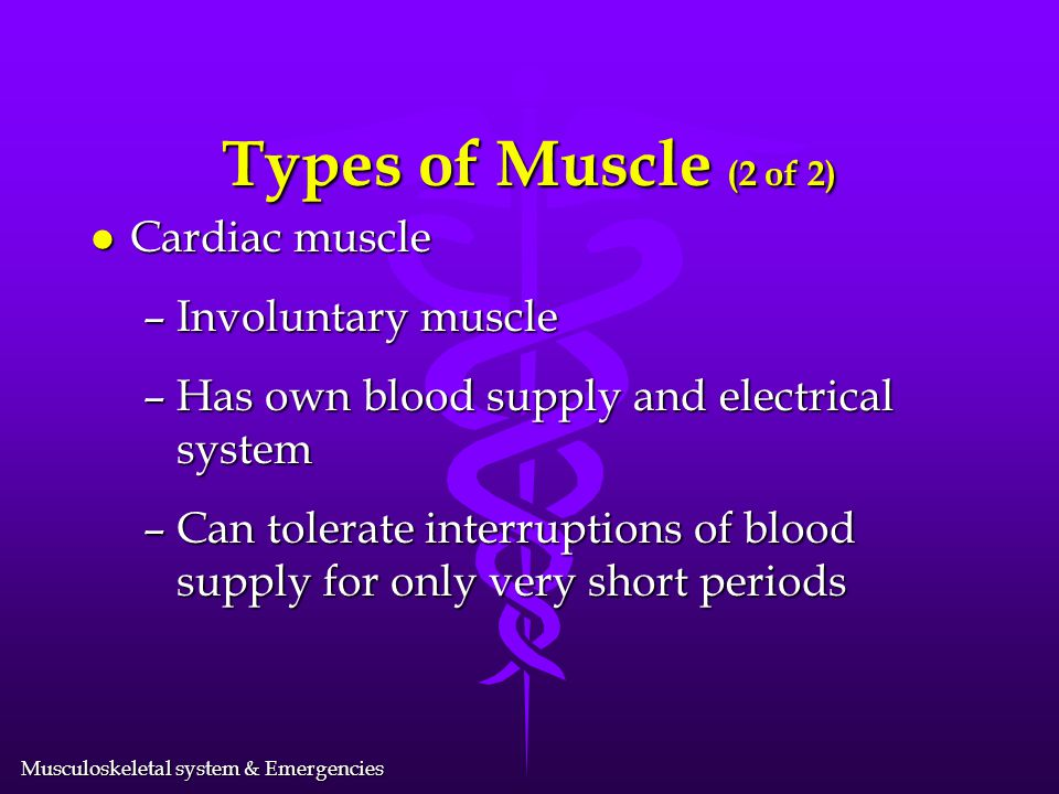 Types of Muscle (2 of 2) Cardiac muscle Involuntary muscle