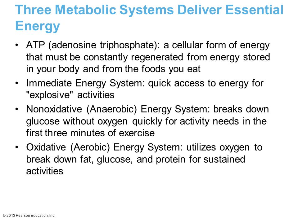 Three Metabolic Systems Deliver Essential Energy