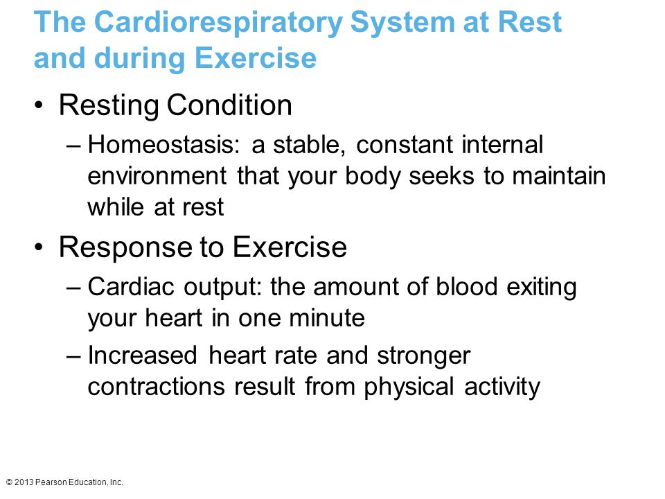 The Cardiorespiratory System at Rest and during Exercise