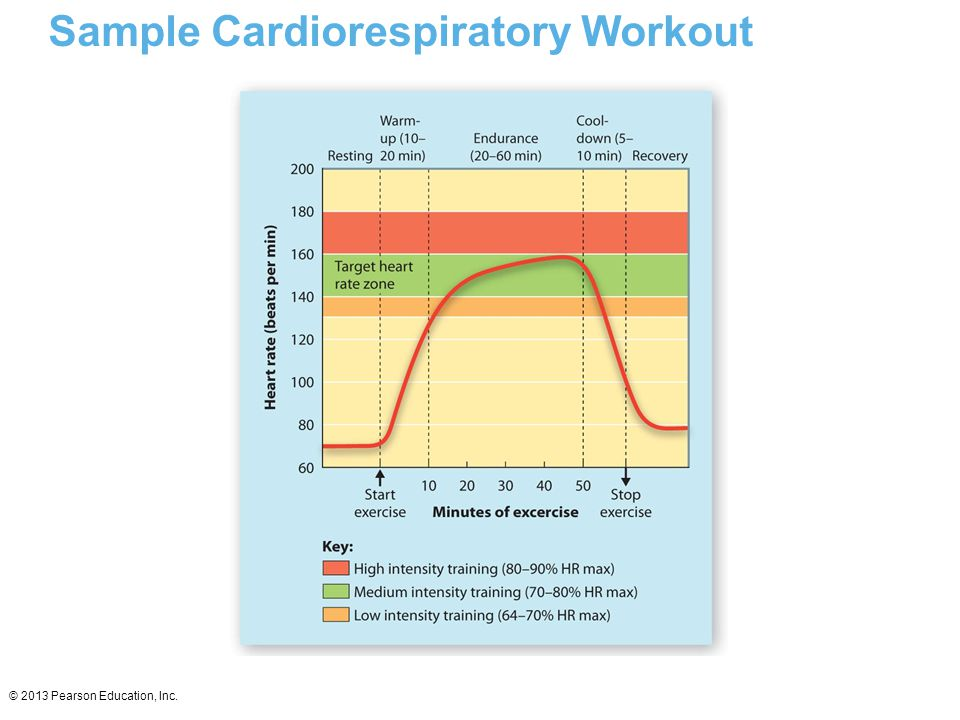 Sample Cardiorespiratory Workout