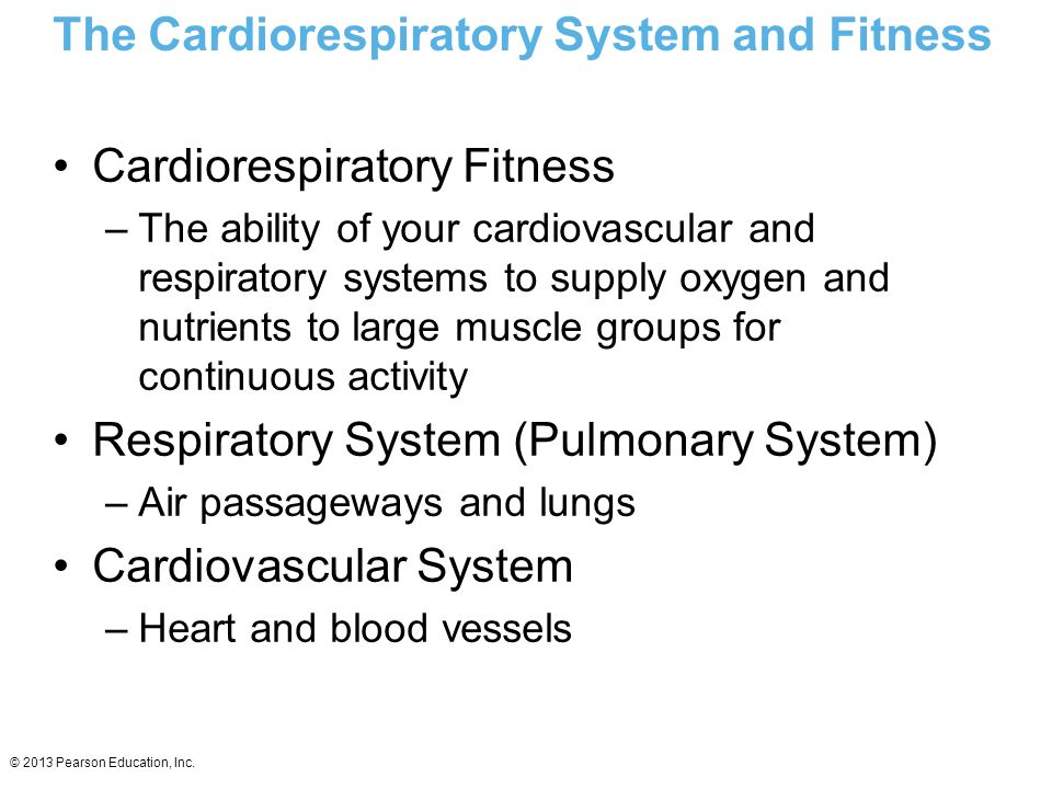 The Cardiorespiratory System and Fitness