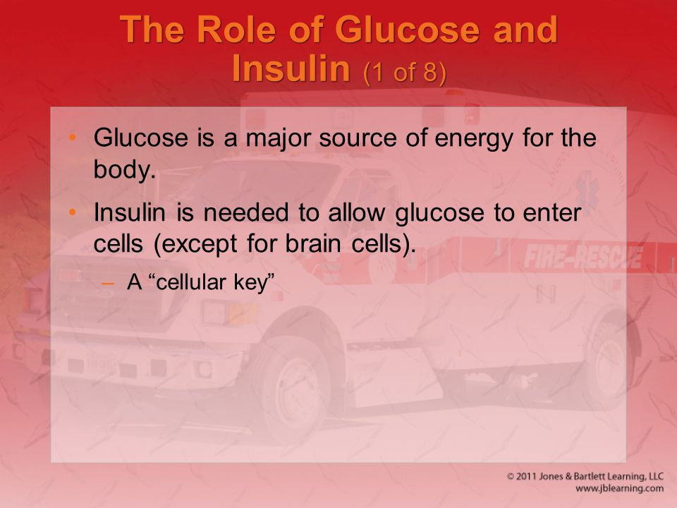 The Role of Glucose and Insulin (1 of 8)