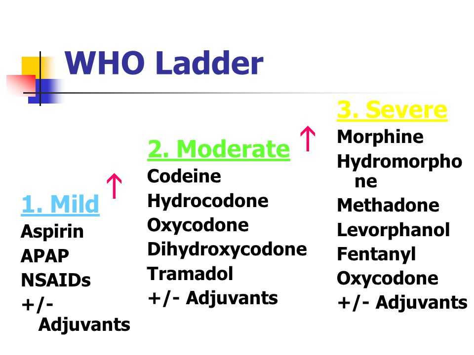   WHO Ladder 3. Severe 2. Moderate 1. Mild Morphine Hydromorphone