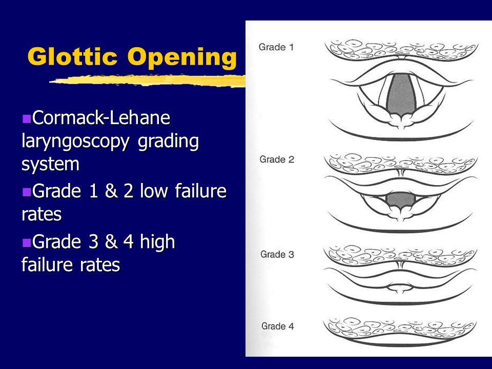 Glottic Opening Cormack-Lehane laryngoscopy grading system