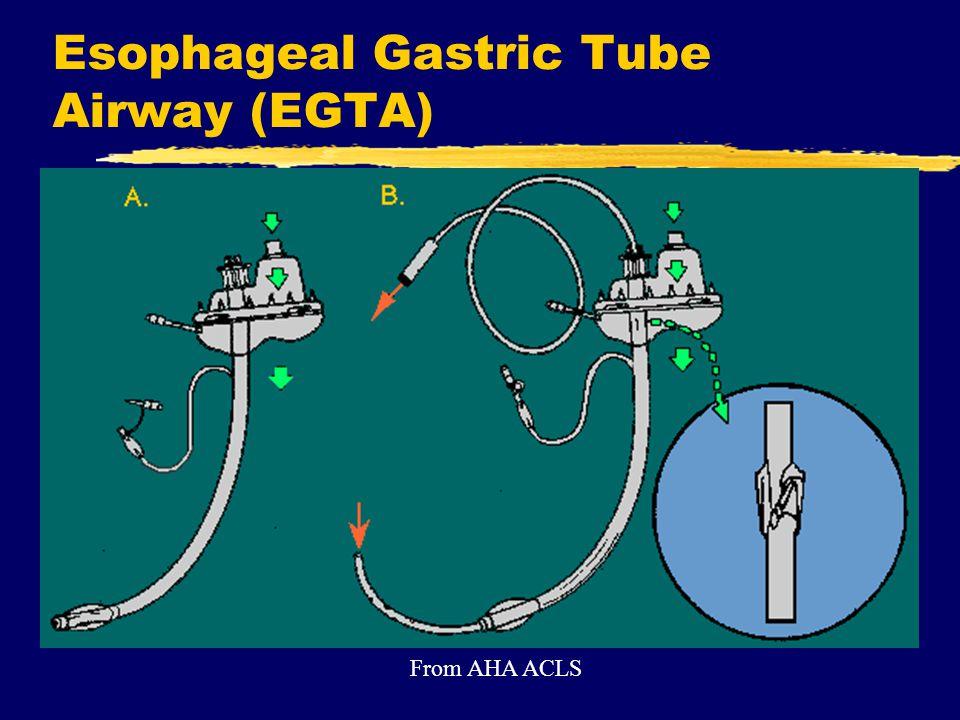 Esophageal Gastric Tube Airway (EGTA)