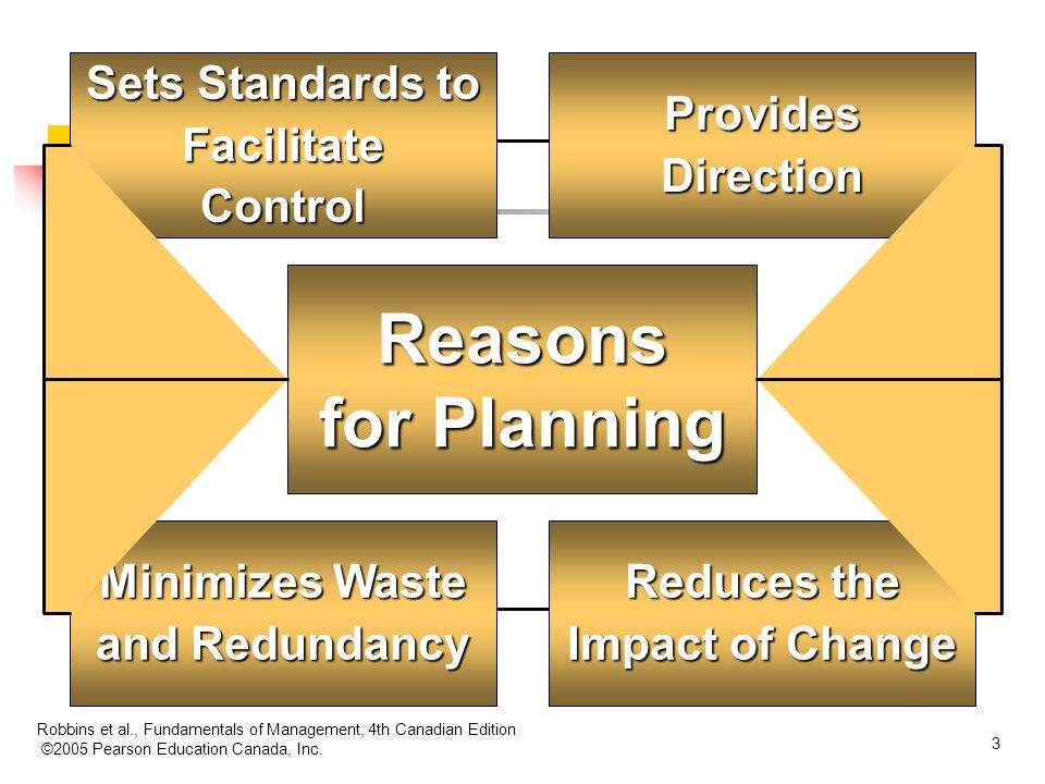 Reasons for Planning Sets Standards to Facilitate Control Provides