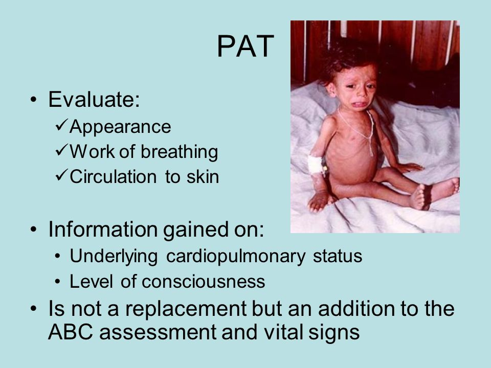 PAT Evaluate: Information gained on: