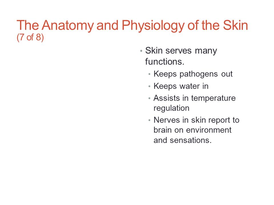 The Anatomy and Physiology of the Skin (7 of 8)