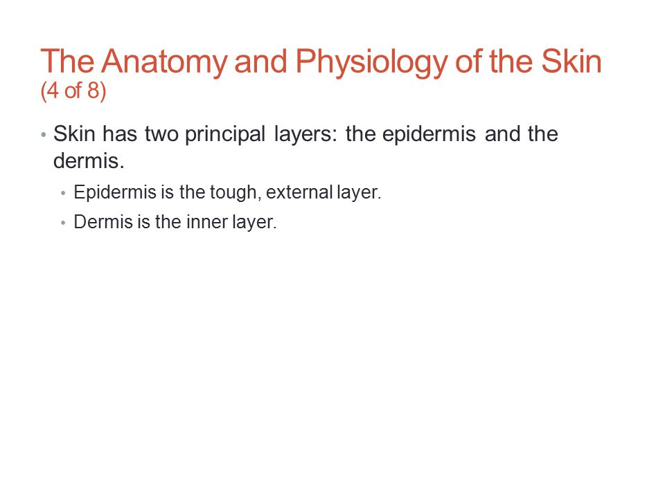 The Anatomy and Physiology of the Skin (4 of 8)