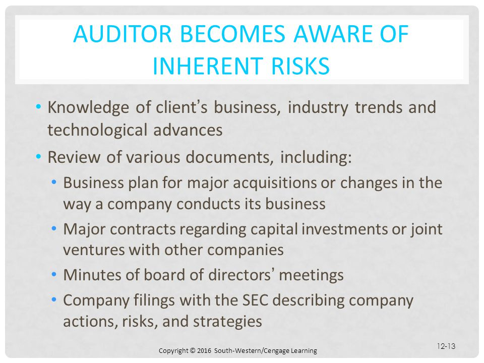 AUDITOR BECOMES AWARE OF INHERENT RISKS