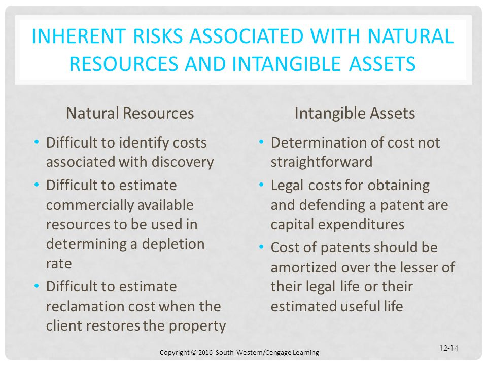 Inherent Risks Associated with Natural Resources and Intangible Assets