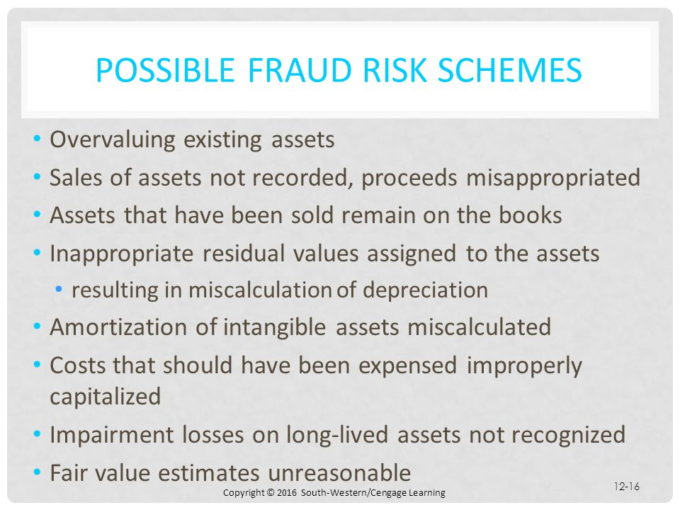 possible Fraud Risk schemes