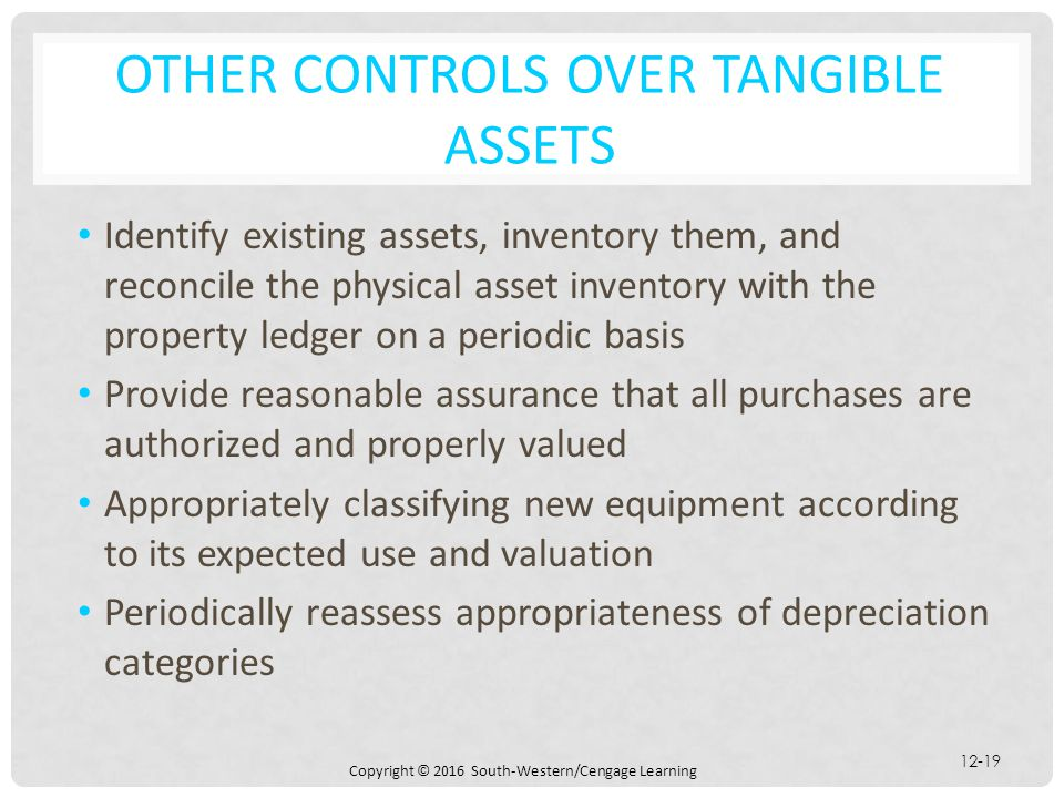Other Controls over Tangible Assets