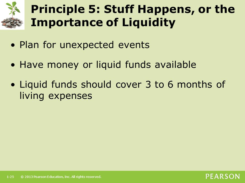 Principle 5: Stuff Happens, or the Importance of Liquidity