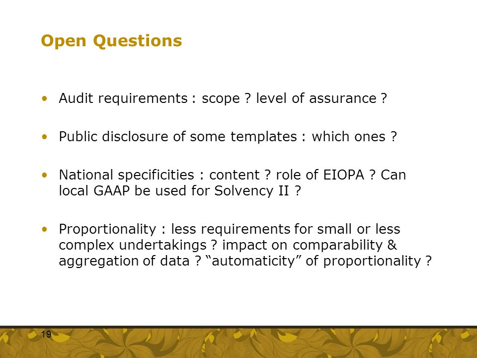 Open Questions Audit requirements : scope level of assurance