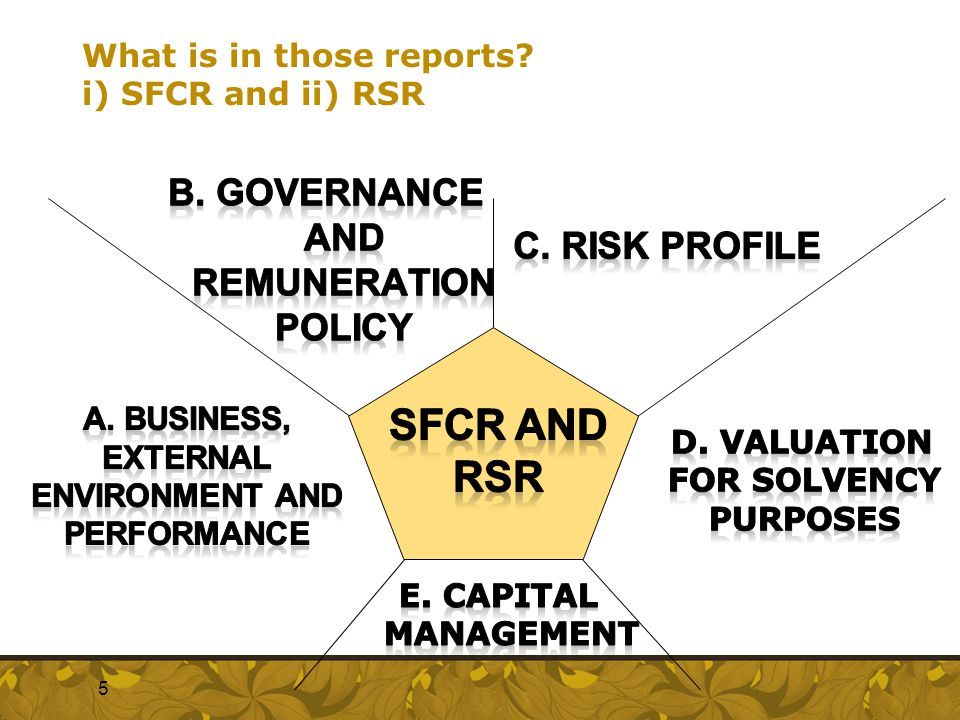 What is in those reports i) SFCR and ii) RSR