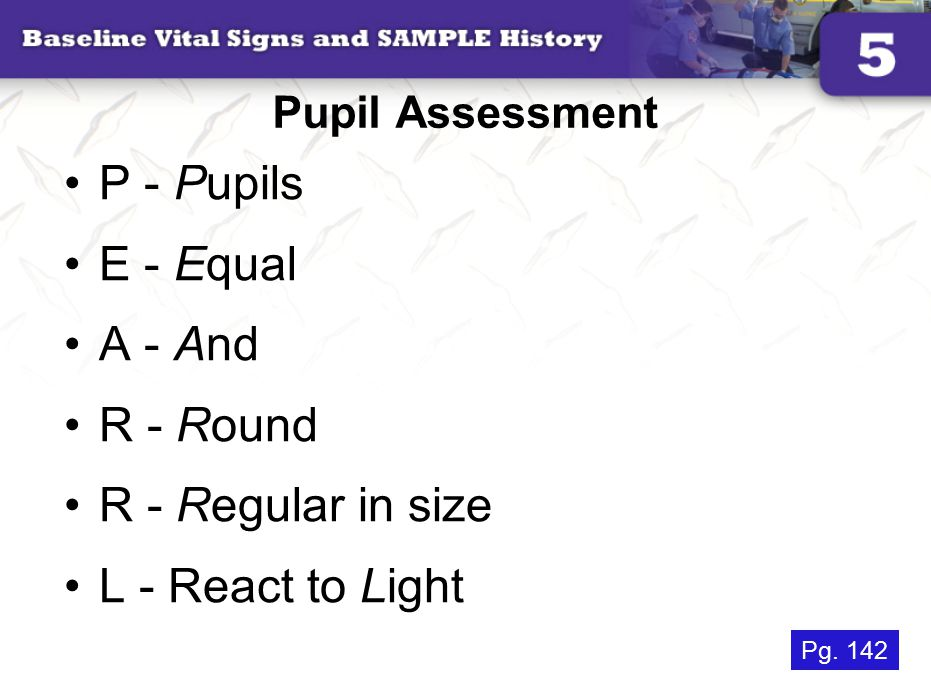 P - Pupils E - Equal A - And R - Round R - Regular in size