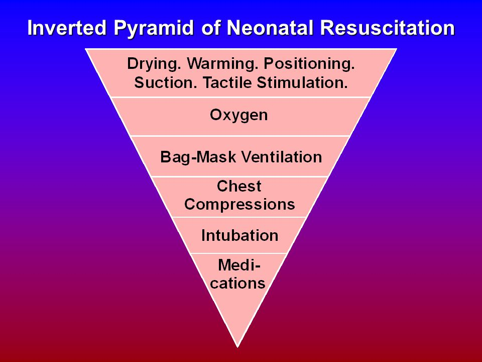 Inverted Pyramid of Neonatal Resuscitation