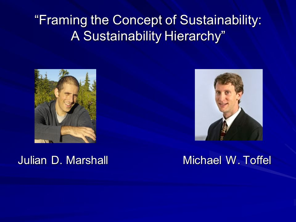 Framing the Concept of Sustainability: A Sustainability Hierarchy