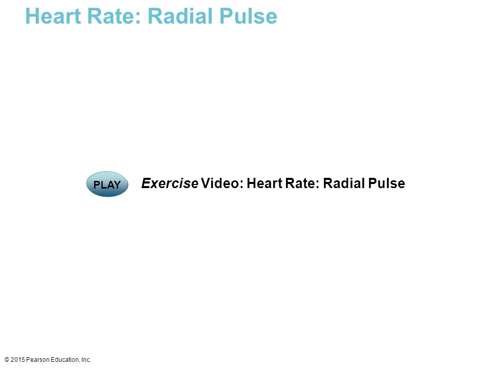Heart Rate: Radial Pulse
