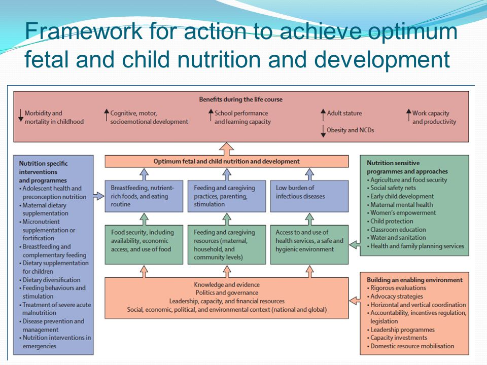 Framework for action to achieve optimum fetal and child nutrition and development