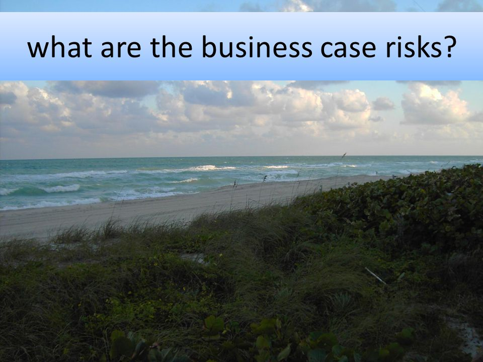 what are the business case risks