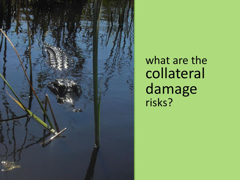 what are the collateral damage risks
