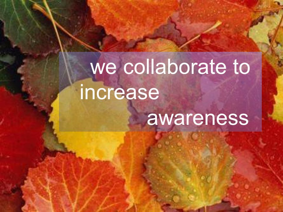 we collaborate to increase awareness