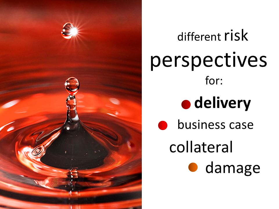 business case collateral damage different risk perspectives for:
