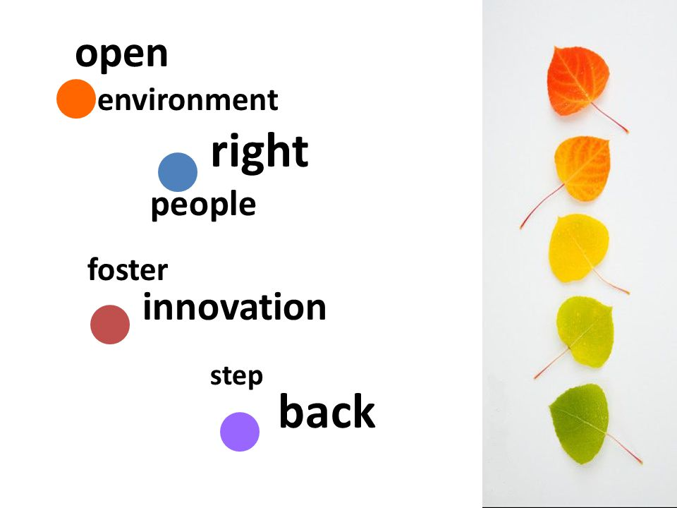 right people foster innovation step back open environment
