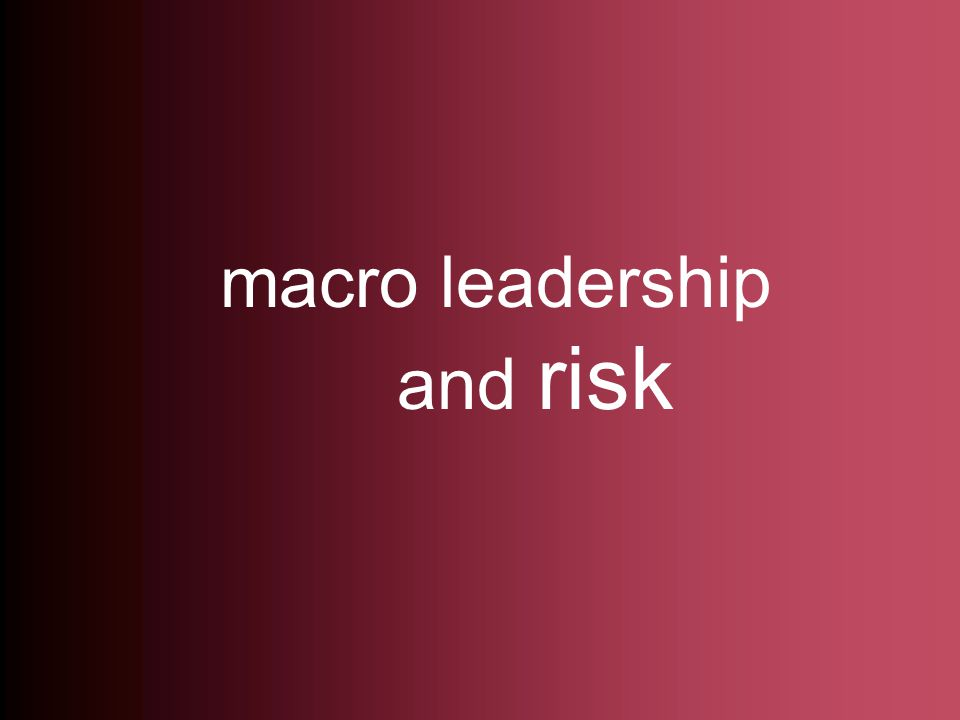 macro leadership and risk
