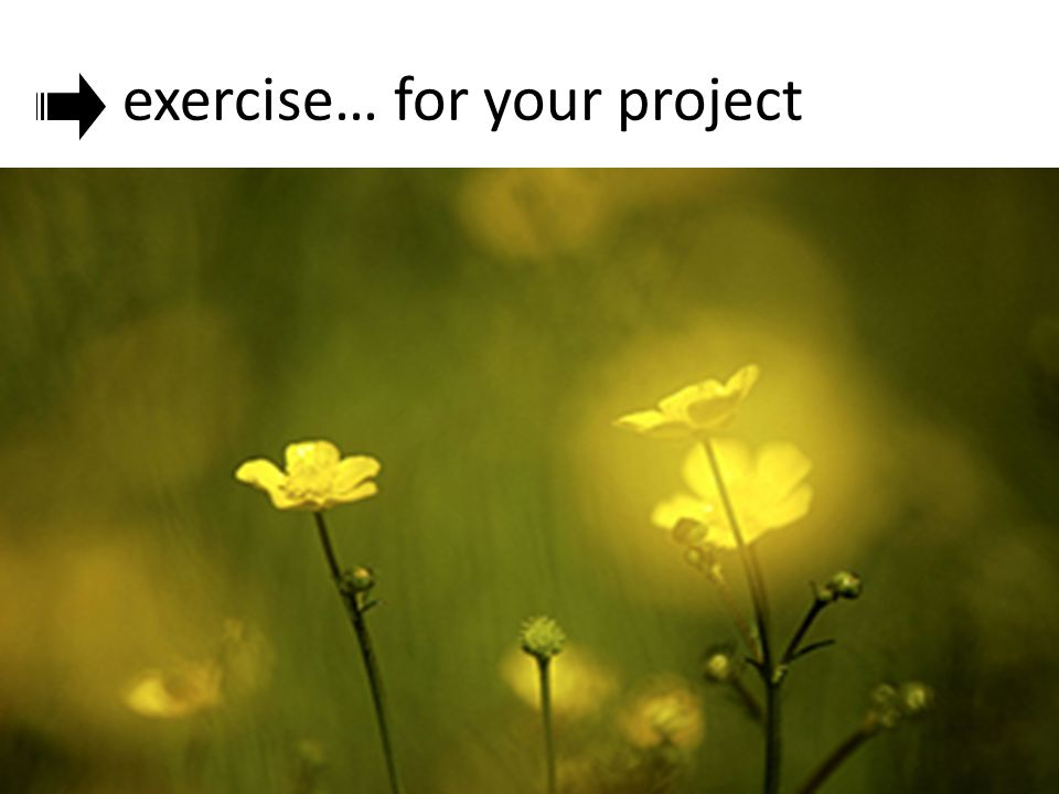 exercise… for your project