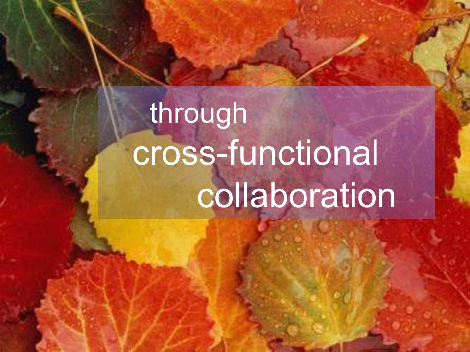 through cross-functional collaboration