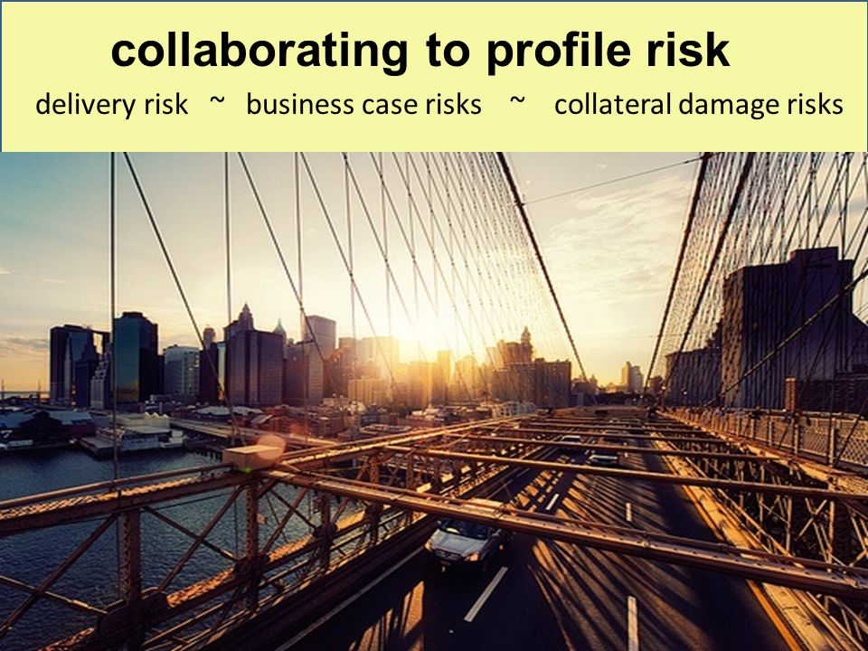 collaborating to profile risk