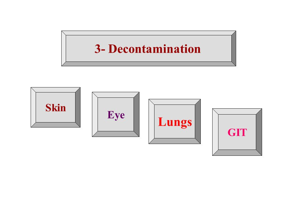 3- Decontamination Lungs