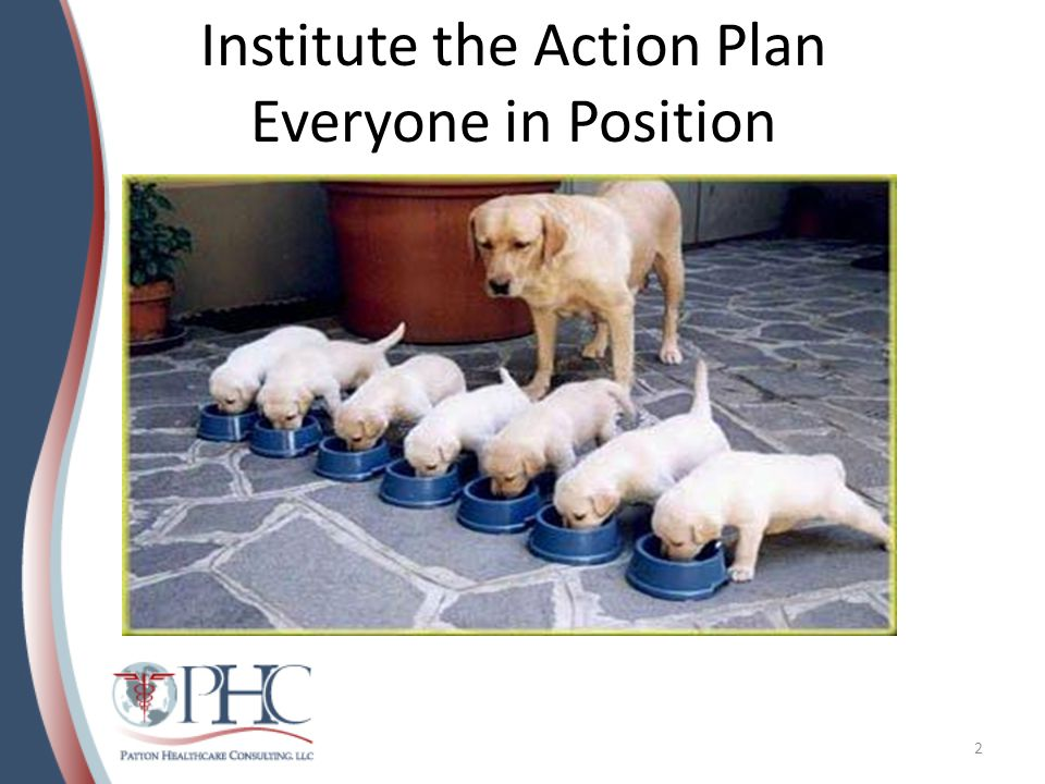 Institute the Action Plan Everyone in Position