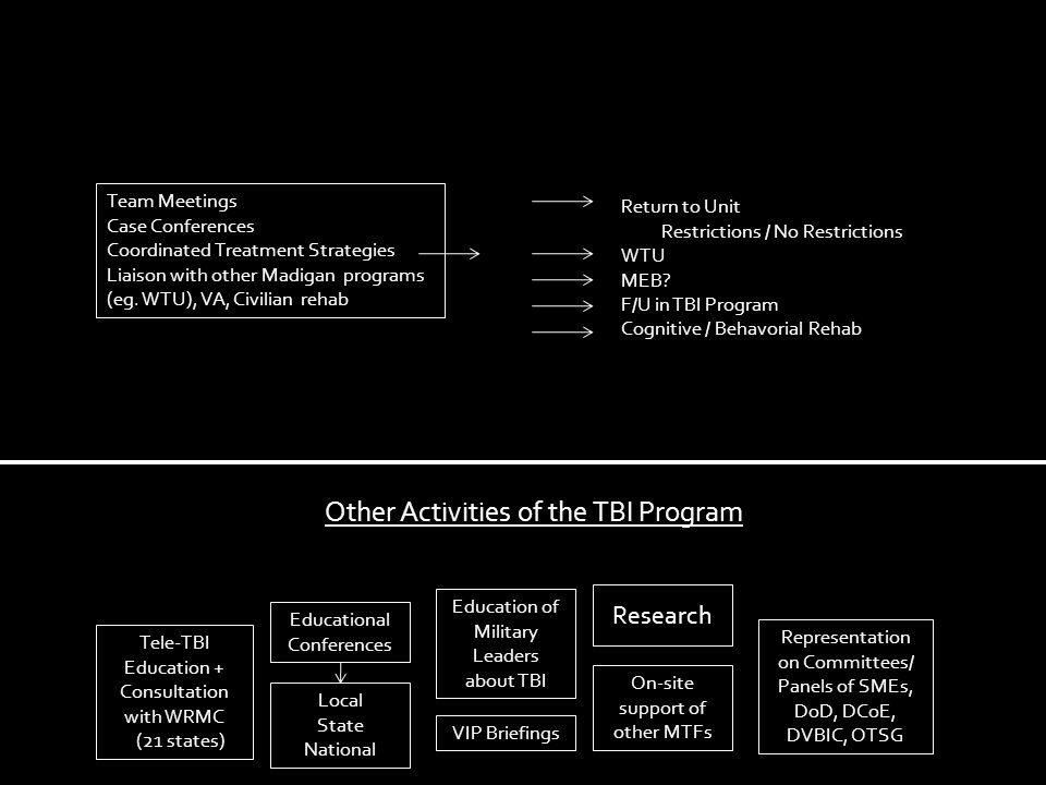 Other Activities of the TBI Program