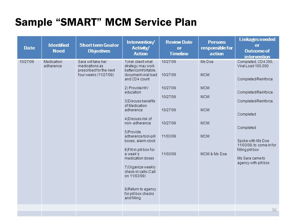 Sample SMART MCM Service Plan