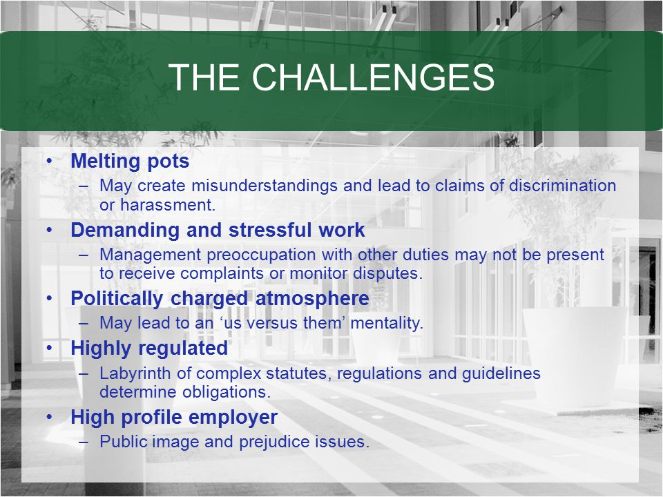 THE CHALLENGES Melting pots Demanding and stressful work