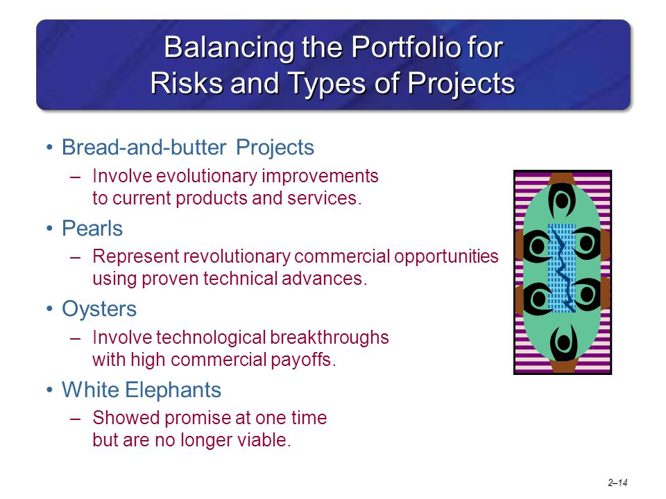 Balancing the Portfolio for Risks and Types of Projects