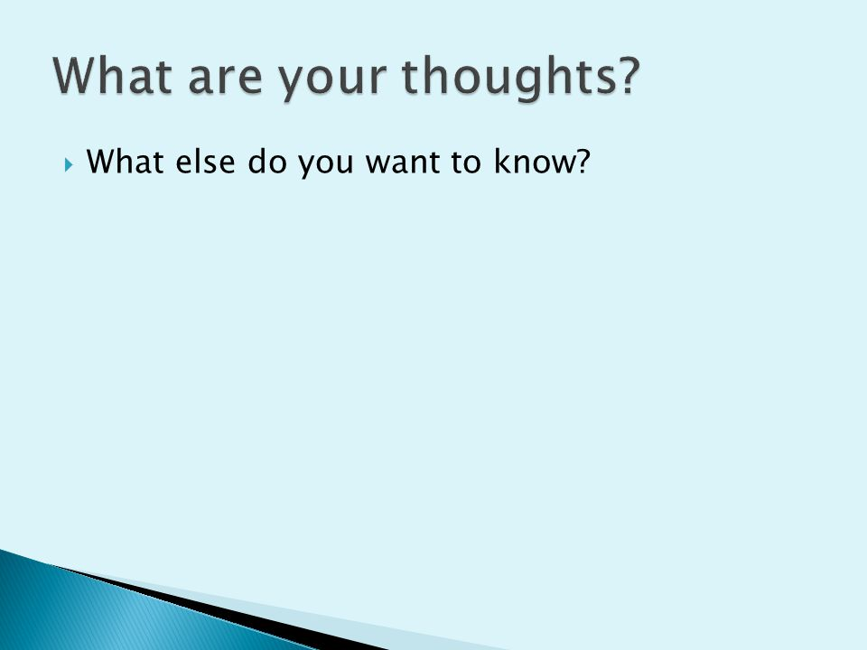 What are your thoughts What else do you want to know