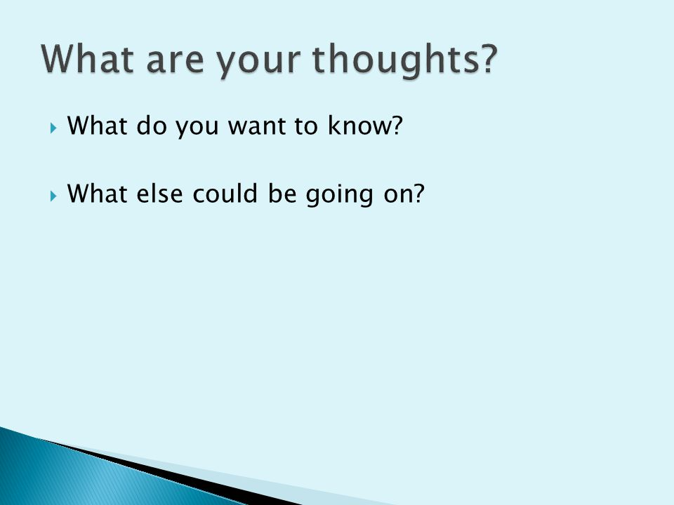 What are your thoughts What do you want to know