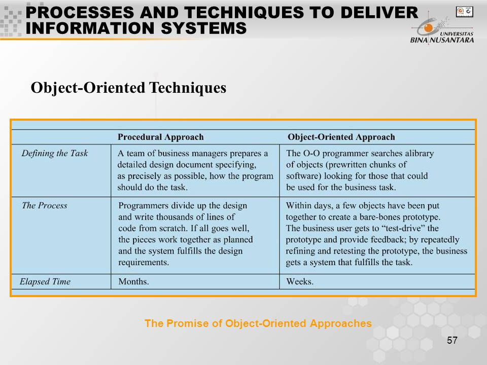 PROCESSES AND TECHNIQUES TO DELIVER INFORMATION SYSTEMS