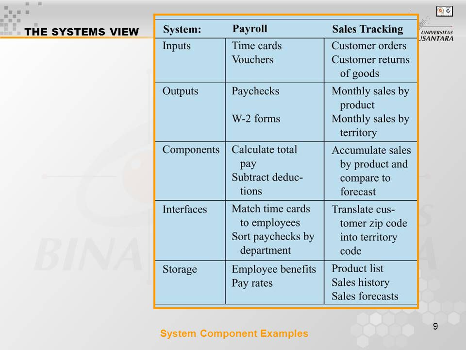 THE SYSTEMS VIEW System Component Examples